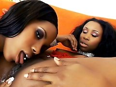 Ebony Muff Gets Lapped